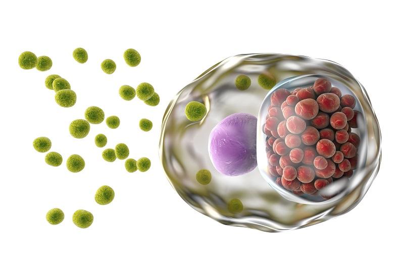 Chlamydia – jakie badania wykonać?