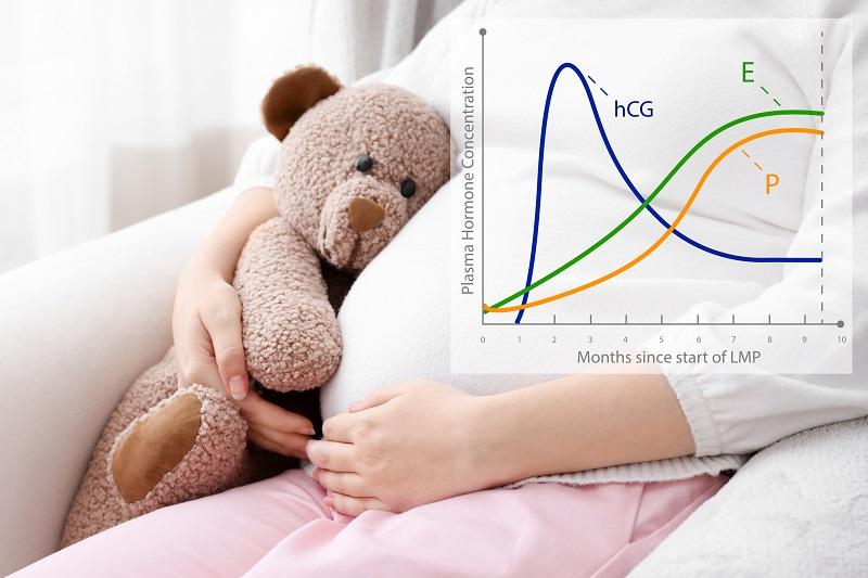 Beta-hCG – badanie potwierdzające ciążę