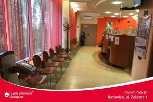 Badania krwi Katowice