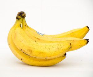 IgE sp. Banan (F92)