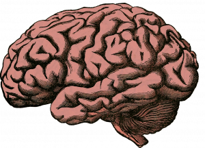 S-100 (marker nowotworowy czerniaka i guzów mózgu)