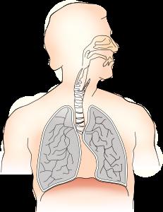 Pneumocystoza (Pneumocystis carinii) p/c IgG/IgM