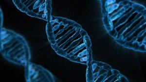 HBV wirus zapalenia wątroby typu B (WZW B) – jakościowo