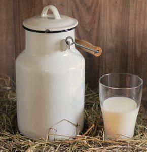 IgE sp. Mleko krowie (F2)