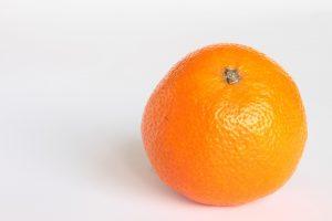 IgE sp. Pomarańcza (F33)