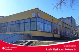 Badania analityczne Ruda Śląska