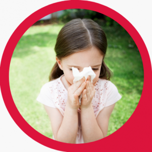 Pakiet alergik