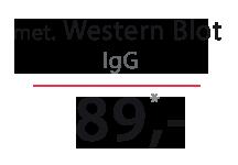 Cena testu na boreliozę met. Western Blot IgG